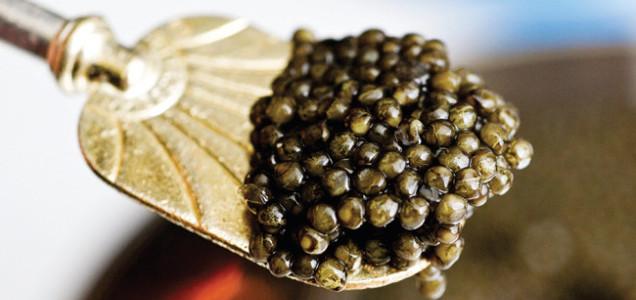 content_caviar1
